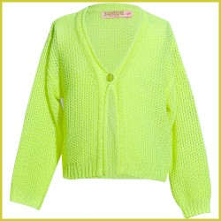 someone-gilet-march-fluo-geel